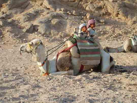 Ägypten visum kaufen