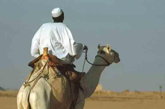 visum Ägypten online kaufen
