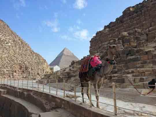 arbeiten in Ägypten visum