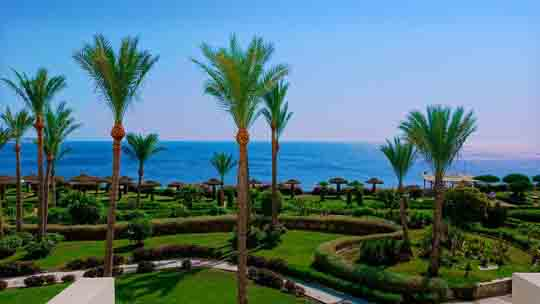 visum Ägypten 2016 preis