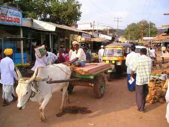 Indien visum passbild