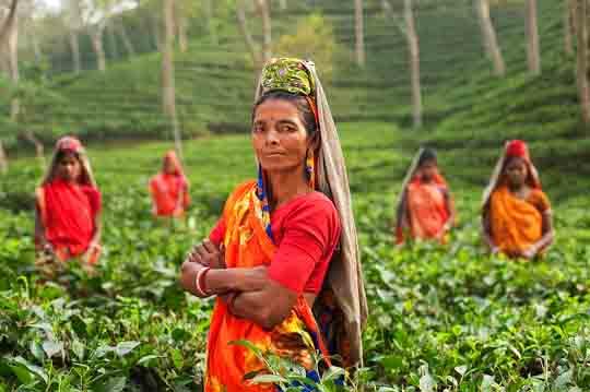 visum für Indien online beantragen