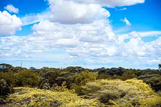 Kenia visum schweiz
