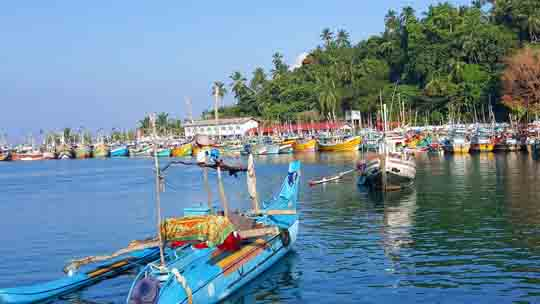 visaantrag Sri lanka