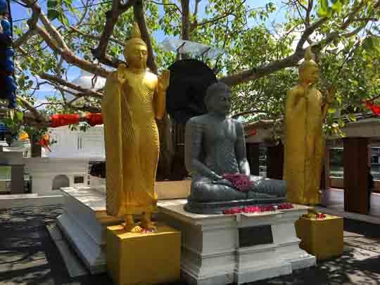 einreisebedingungen Sri lanka